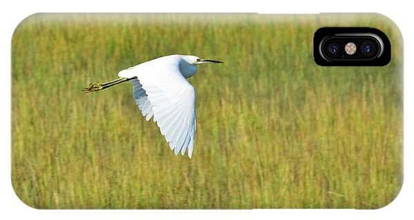 Snowy Egret Doing A Downstroke IPhone Case
