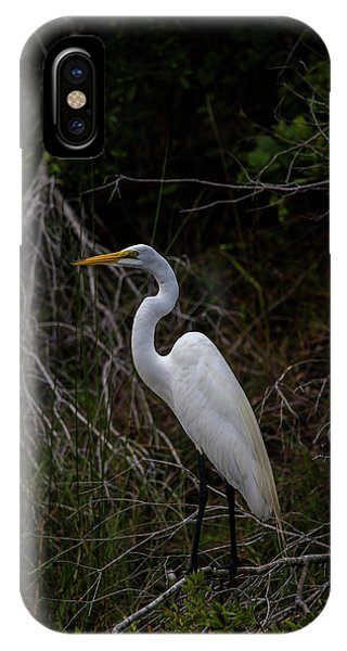 Snowy Egret On A Hot Summer Day IPhone Case