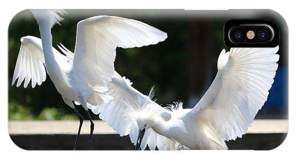 iPhone Case - Snowy Egrets Drama by Carol Groenen