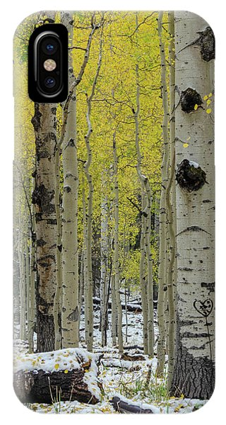 IPhone Case featuring the photograph Snowy Gold Aspen by Gaelyn Olmsted