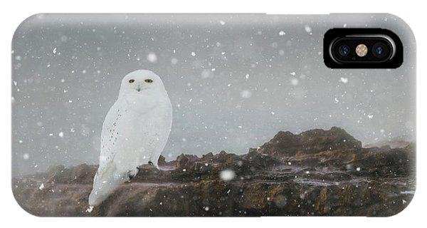Snowy Owl On A Ledge IPhone Case