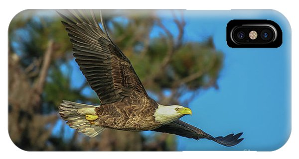 IPhone Case featuring the photograph Soaring Eagle by Tom Claud
