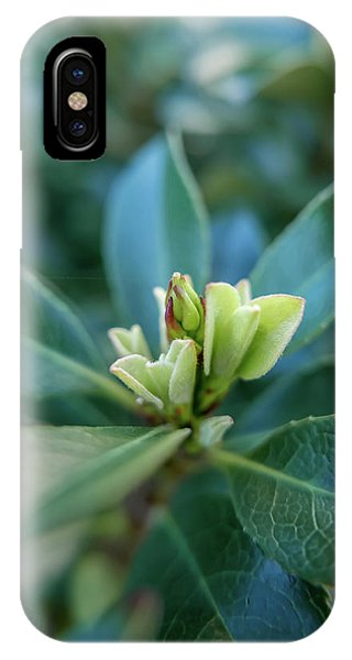 Softly Blooming IPhone Case