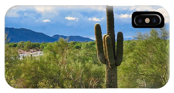 Sonoran Desert Landscape Post-monsoon IPhone Case
