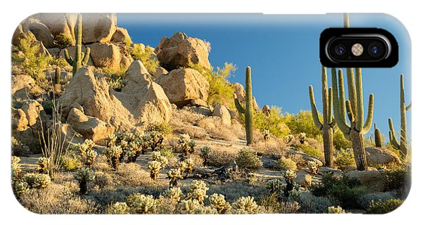 Cacti iPhone Case - Sonoran Desert Landscape by Stacy Funderburke