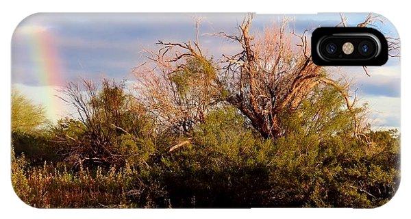 Sonoran Desert Spring Rainbow IPhone Case