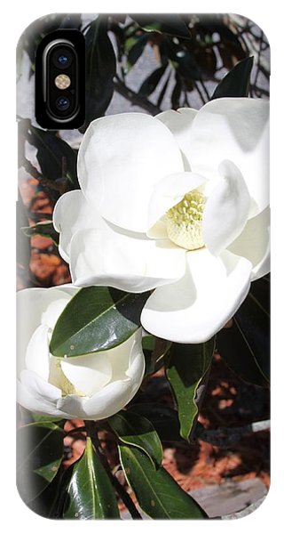 Sosouthern Magnolia Blossoms IPhone Case