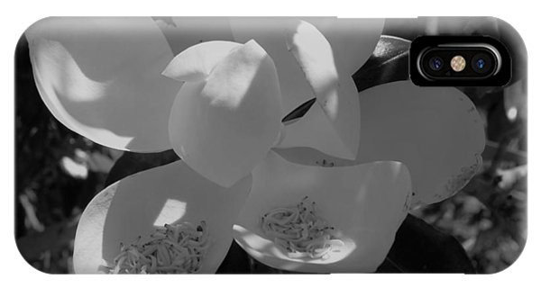 Southern Magnolia In Black And White IPhone Case