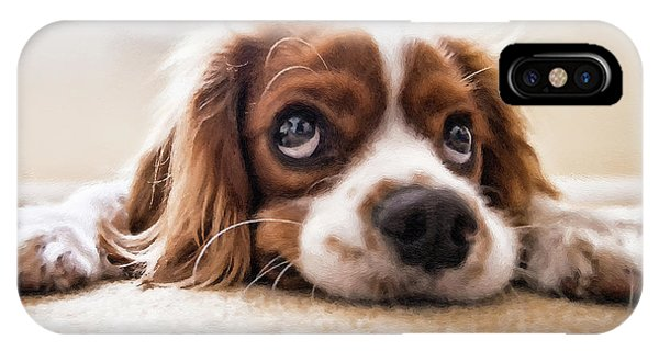 Spaniel Puppy Dwp2785074 IPhone Case