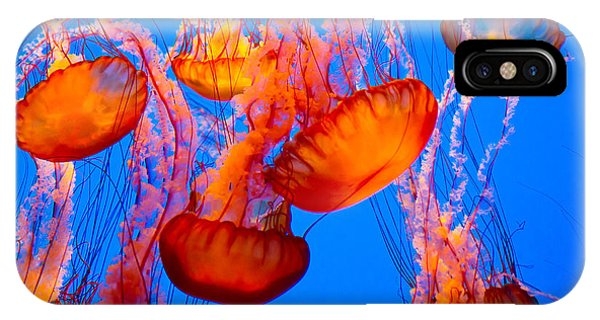 Texture iPhone Case - Spectacular Jellyfish by Bierchen