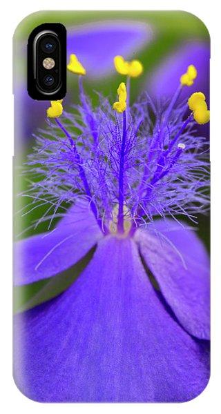 Tradescantia iPhone Case - Spiderwort Flower Close-up, Tradescantia by Adam Jones