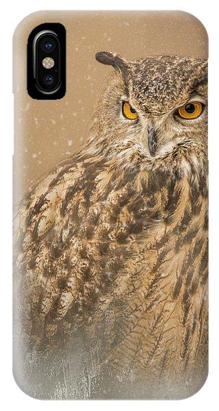 Spirit Of The Snow  IPhone Case