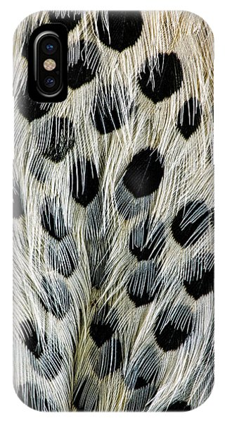 Northern Flicker iPhone Case - Spot Pattern On Belly Feathers by Adam Jones