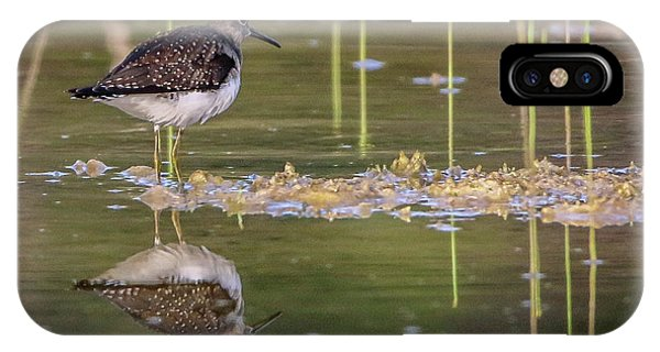 Spotted Sandpiper Reflection IPhone Case