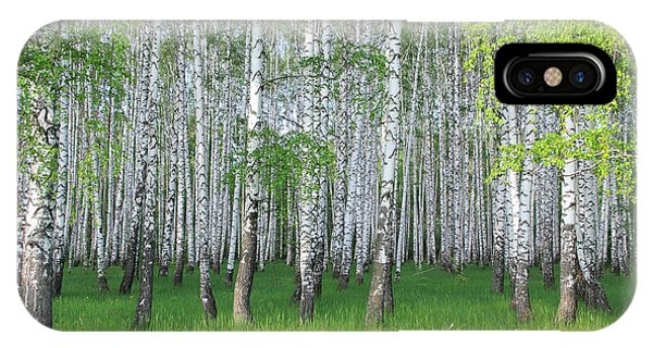 Spring Birch Grove Phone Case by Kirillov Alexey