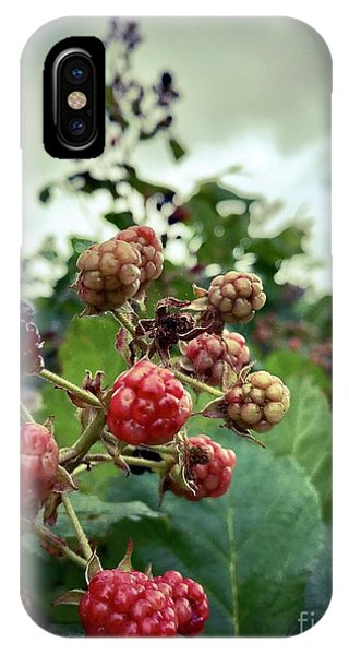 Early Summer Blackberries Phone Case by JMerrickMedia