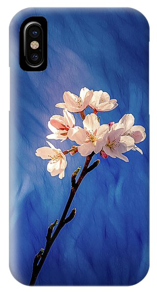 IPhone Case featuring the photograph Spring Color #1 by Allin Sorenson