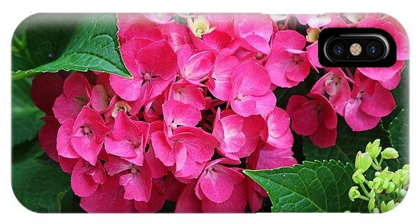 Spring Hydrangea IPhone Case