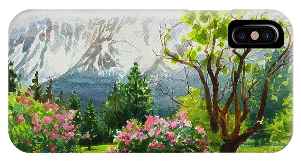 Beauty In Nature iPhone Case - Spring In The Wallowas by Steve Henderson