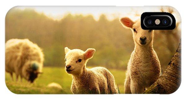 Farmland iPhone Case - Spring Lambs by Drew Rawcliffe