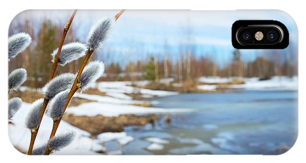 Flooded iPhone Case - Spring Landscape With Willow Branches by Leonid Ikan