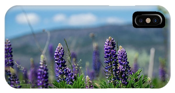 Spring Lupines IPhone Case