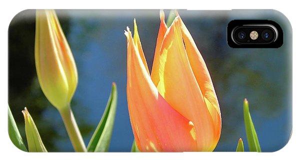 Simple iPhone Case - Spring Tulip by Susan Lafleur