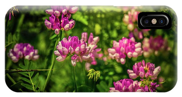 IPhone Case featuring the photograph Spring Wildflowers by Allin Sorenson
