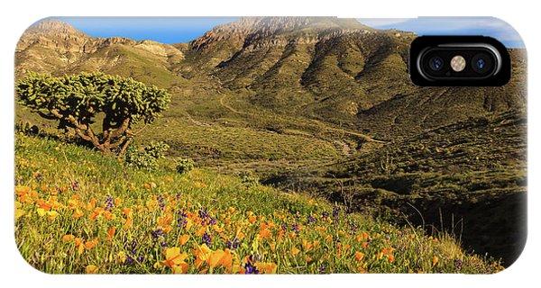Springtime In The Desert Southwest IPhone Case