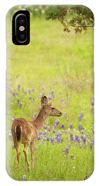 Springtime Whitetail IPhone Case