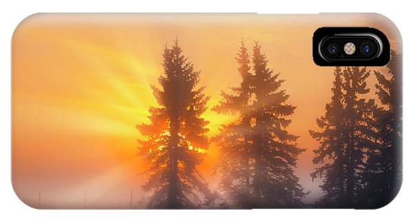 Spruce Trees In The Morning IPhone Case