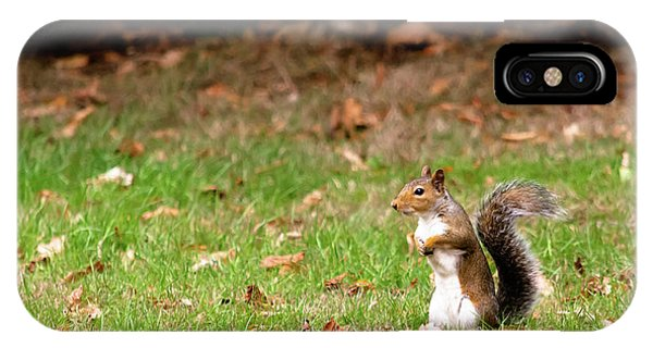 IPhone Case featuring the photograph Squirrel Stood Up In Grass by Scott Lyons