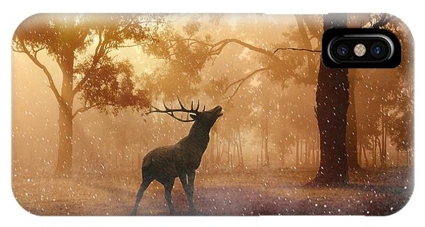 Stag In The Forest IPhone Case