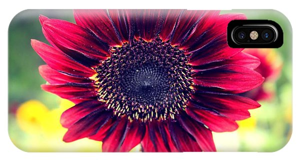 IPhone Case featuring the photograph Stand Out by Candice Trimble