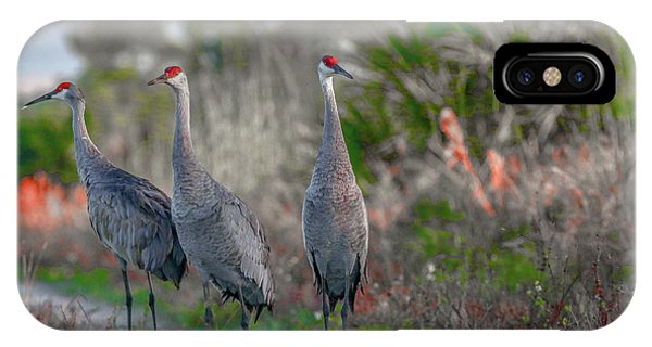 IPhone Case featuring the photograph Standing Sandhills by Tom Claud