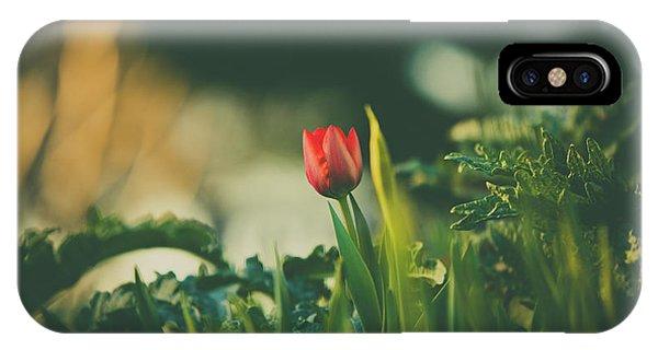 Start Of Spring IPhone Case