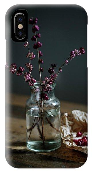 Dark Violet iPhone Case - Still Life With Berries by Nailia Schwarz