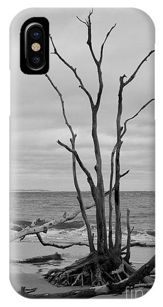 iPhone Case - Still Standing by Carol Groenen