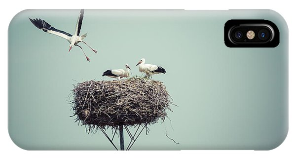 Baby Blue iPhone Case - Stork With Baby Birds In The Nest by Curioso