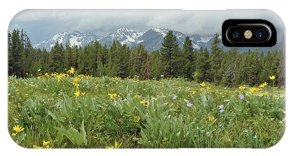 Stormy Tetons And Flowers IPhone Case