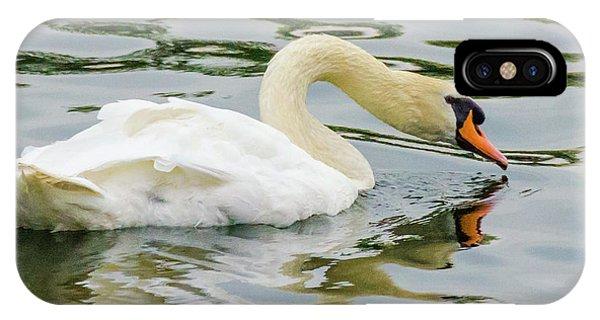 Strasbourg Swan IPhone Case