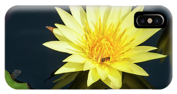 Stunning In Yellow IPhone Case