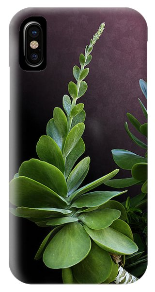 Succulent Spear IPhone Case