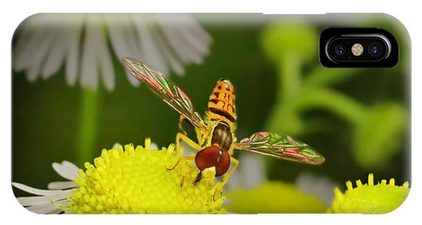 Sugar Bee Wings IPhone Case