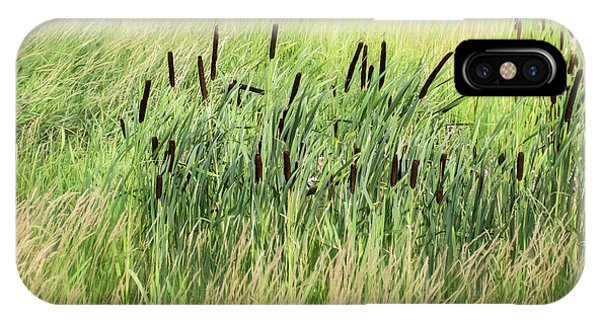 Summer Cattails In Field Of Grass - IPhone Case