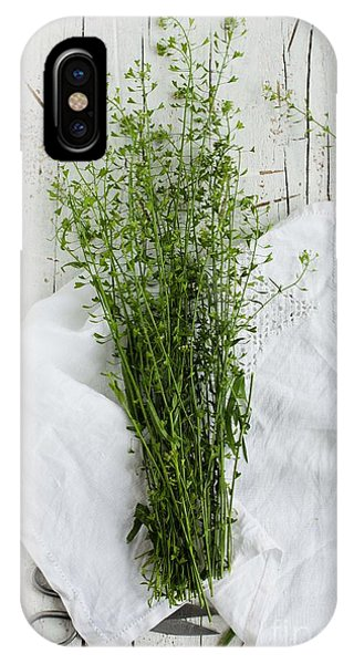 Nature Still Life iPhone Case - Summer Day With Wild Grass. Top View by Casanisa