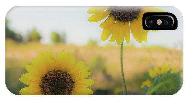 Summer Softness IPhone Case