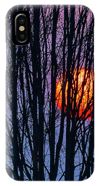 Sun Set iPhone Case - Sun Caught In Tree Branches by Garry Gay