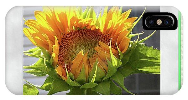 Sunflower Birthday IPhone Case