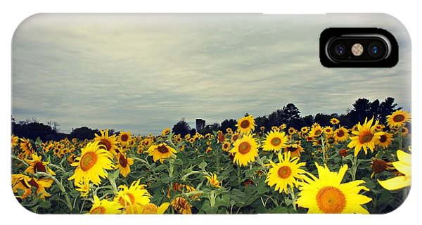 IPhone Case featuring the photograph Sunflower Fields by Candice Trimble